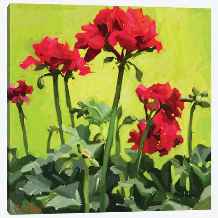 Geranium Love Canvas Print #TEP44} by Teddi Parker Canvas Artwork