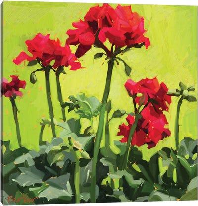 Geranium Love Canvas Art Print