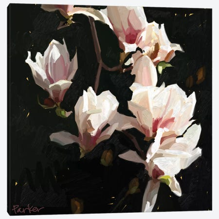 Magnolia Drama Canvas Print #TEP45} by Teddi Parker Canvas Artwork