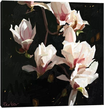 Magnolia Drama Canvas Art Print