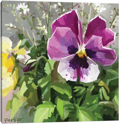 Pansy Face Canvas Art Print