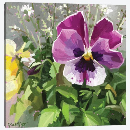 Pansy Face Canvas Print #TEP46} by Teddi Parker Canvas Wall Art
