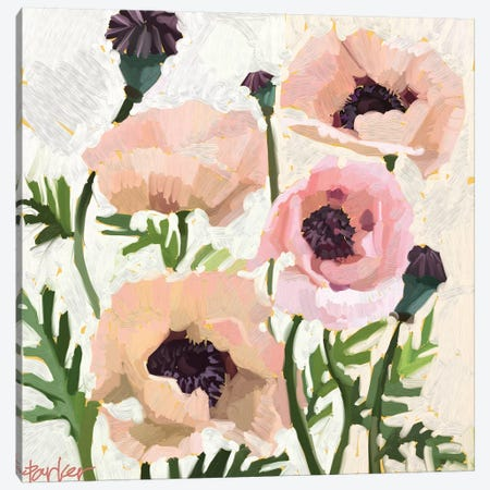 Delicate Poppies Canvas Print #TEP48} by Teddi Parker Canvas Art Print