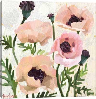 Delicate Poppies Canvas Art Print