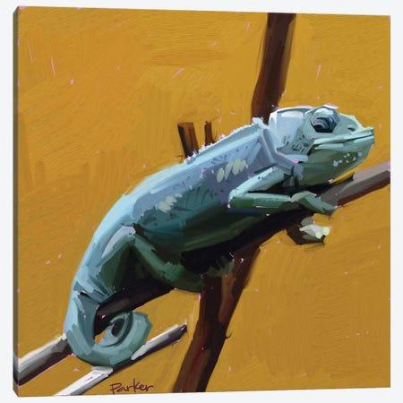 Chameleon Canvas Print #TEP4} by Teddi Parker Canvas Art