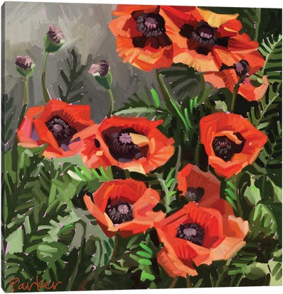 Giant Poppies Canvas Art Print