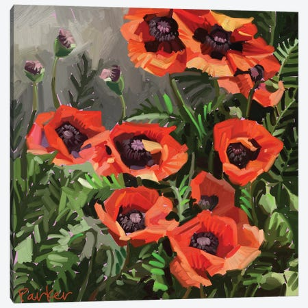Giant Poppies Canvas Print #TEP51} by Teddi Parker Canvas Wall Art