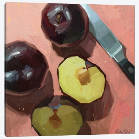 Warm Plums Canvas Print #TEP60} by Teddi Parker Canvas Print