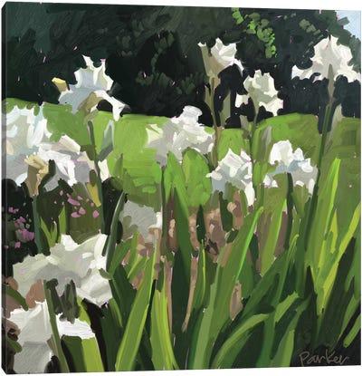 White Garden Canvas Art Print