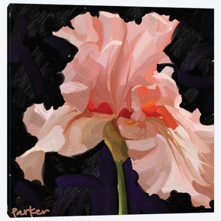 Iris On Fire Canvas Print #TEP82} by Teddi Parker Canvas Print