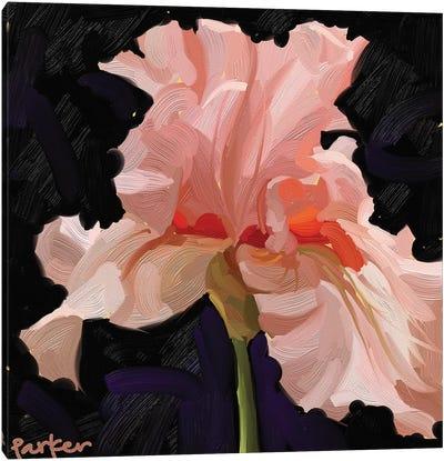 Iris On Fire Canvas Art Print