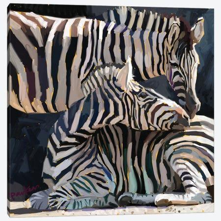 Rainbow Zebras II Canvas Print #TEP97} by Teddi Parker Canvas Art Print