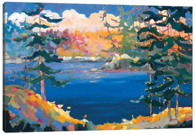 Lake in the Woods  Canvas Art Print