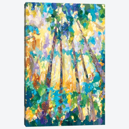 Cathedral X Canvas Print #TES27} by Teresa Smith Canvas Art Print