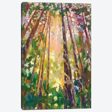 Cathedral VI Canvas Print #TES36} by Teresa Smith Canvas Art