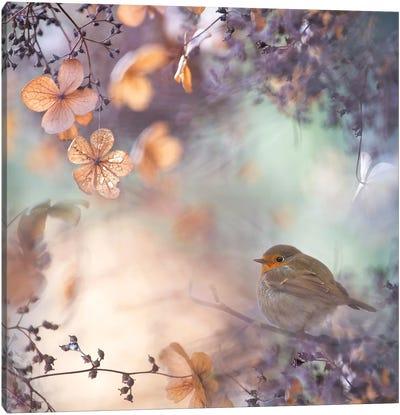 Hydrangea Fantasy Canvas Art Print