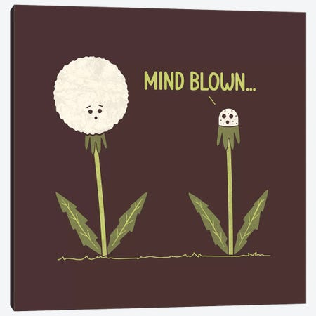 Mind Blown Canvas Print #TEZ36} by HandsOffMyDinosaur Canvas Print