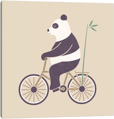 Bamboo Bicycle Canvas Art Print
