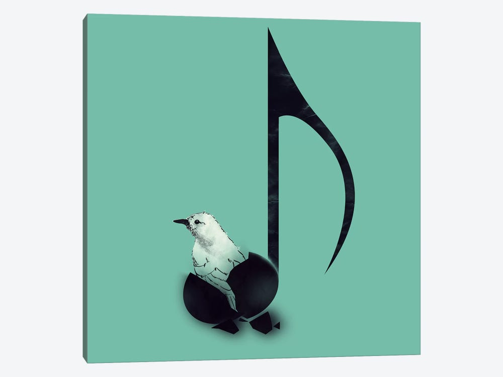 Born To Sing by Tobias Fonseca 1-piece Canvas Wall Art