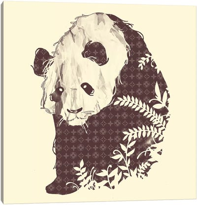 Brand New Panda Canvas Art Print