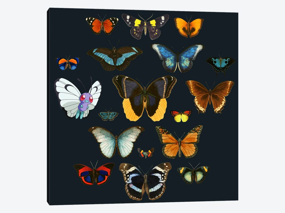Entomology by Tobias Fonseca 1-piece Canvas Art Print