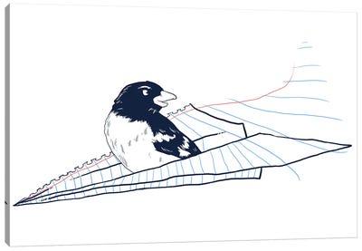 Flying Away Canvas Print #TFA152