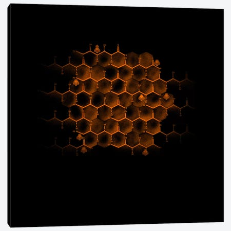 Glucose Hive Canvas Print #TFA160} by Tobias Fonseca Canvas Wall Art