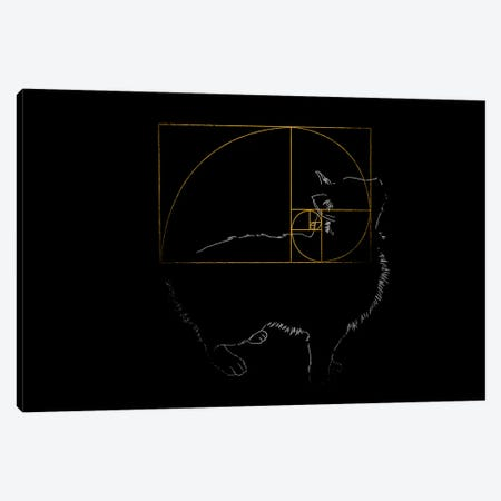 Golden Cat Canvas Print #TFA161} by Tobias Fonseca Canvas Art