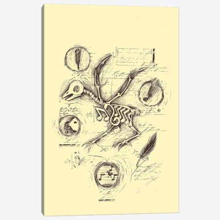Music's Anatomy Canvas Print #TFA198} by Tobias Fonseca Canvas Art Print
