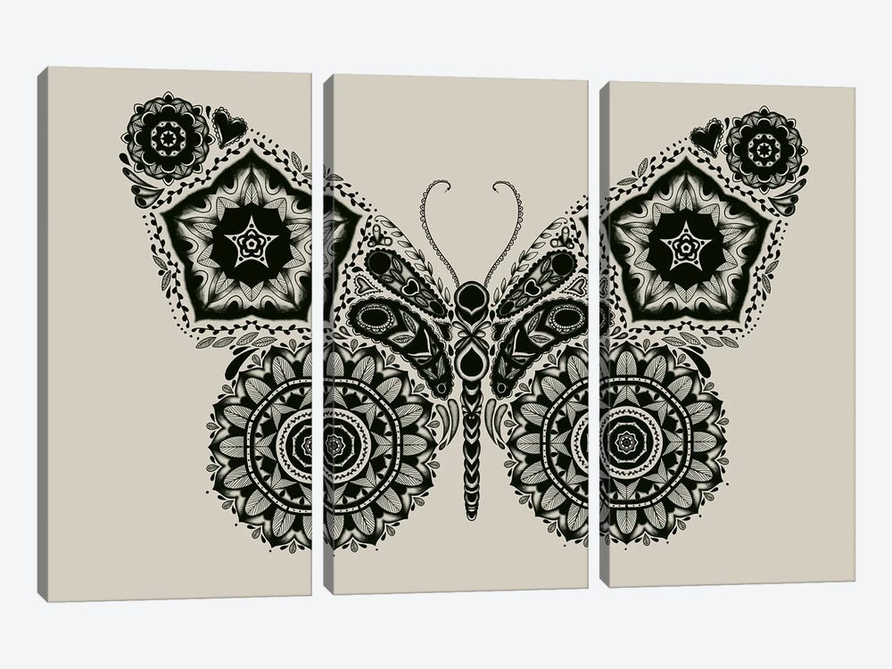 Ornamental Butterfly by Tobias Fonseca 3-piece Canvas Art Print
