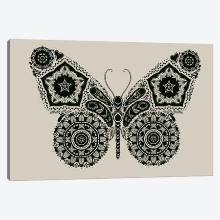 Ornamental Butterfly Canvas Print #TFA205} by Tobias Fonseca Canvas Artwork
