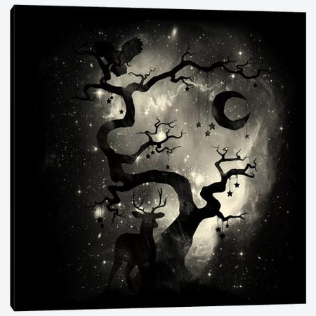 Stardust Forest Canvas Print #TFA239} by Tobias Fonseca Canvas Art