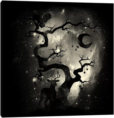 Stardust Forest Canvas Print #TFA239
