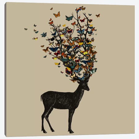 Wild Nature Canvas Print #TFA270} by Tobias Fonseca Canvas Artwork