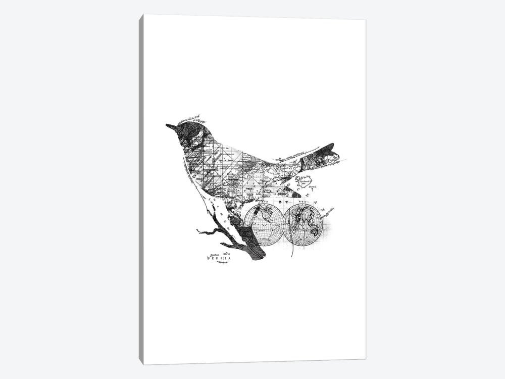Bird Wanderlust, Rectangle by Tobias Fonseca 1-piece Canvas Artwork
