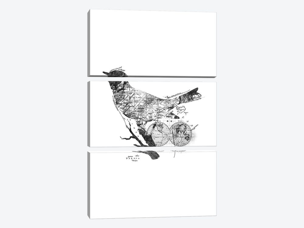 Bird Wanderlust, Rectangle by Tobias Fonseca 3-piece Canvas Artwork