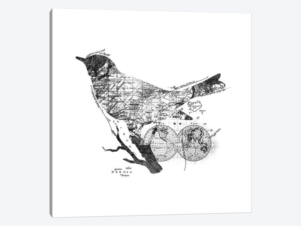 Bird Wanderlust, Square by Tobias Fonseca 1-piece Canvas Art Print