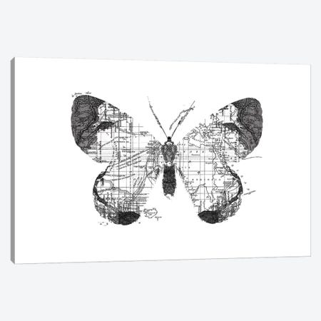 Butterfly Wanderlust, Rectangle Canvas Print #TFA286} by Tobias Fonseca Canvas Artwork