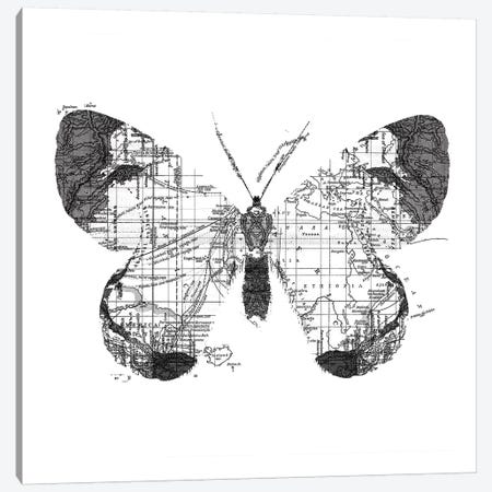 Butterfly Wanderlust, Square Canvas Print #TFA287} by Tobias Fonseca Canvas Art
