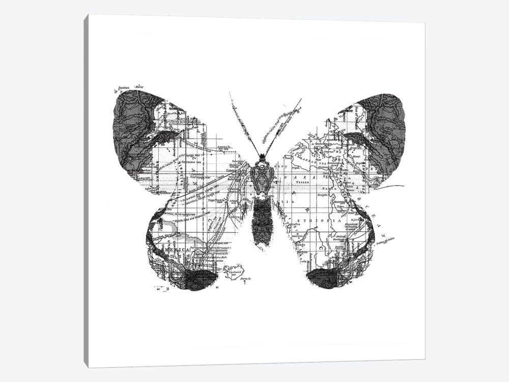 Butterfly Wanderlust, Square by Tobias Fonseca 1-piece Canvas Print