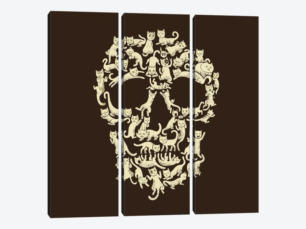 Catskull, Square by Tobias Fonseca 3-piece Canvas Print