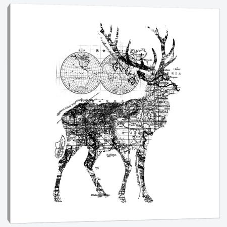 Deer Wanderlust, Square Canvas Print #TFA291} by Tobias Fonseca Canvas Art