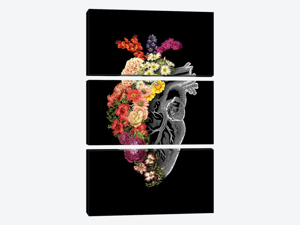 Flower Heart Spring, Rectangle by Tobias Fonseca 3-piece Canvas Art Print