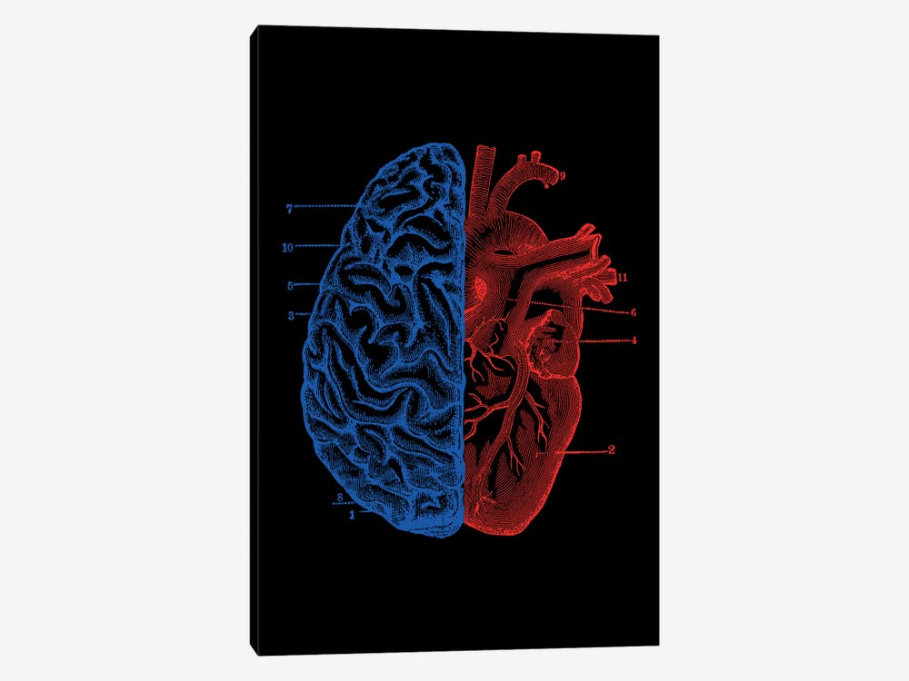 Heart And Brain, Rectangle by Tobias Fonseca 1-piece Art Print