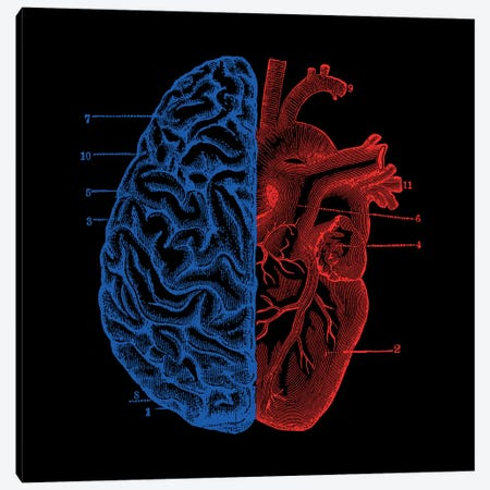 Heart And Brain, Square Canvas Print #TFA297} by Tobias Fonseca Canvas Print
