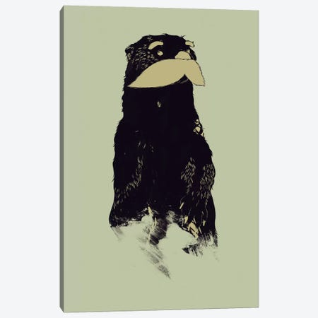 An Otter Moustache Canvas Print #TFA35} by Tobias Fonseca Canvas Art