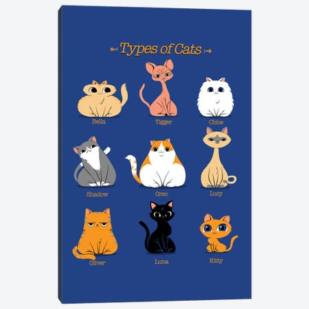 Types Of Cats Canvas Print #TFA379} by Tobias Fonseca Canvas Art Print