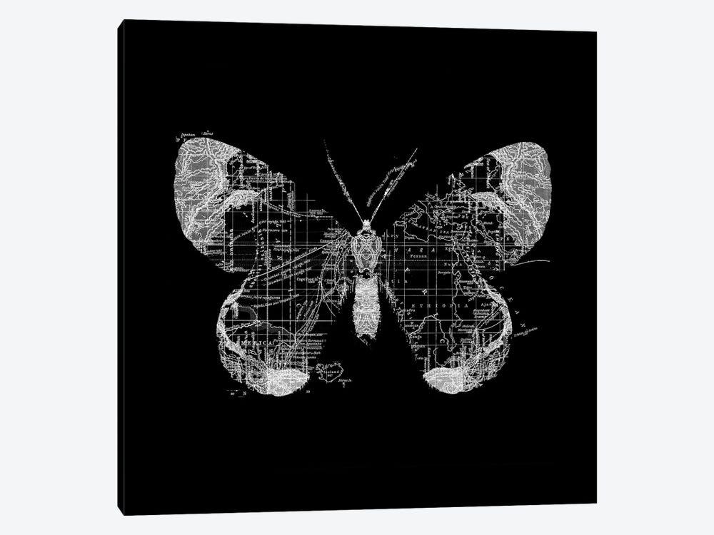 Butterfly Wanderlust by Tobias Fonseca 1-piece Canvas Artwork