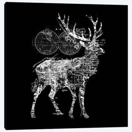 Deer Wanderlust Canvas Print #TFA388} by Tobias Fonseca Canvas Artwork