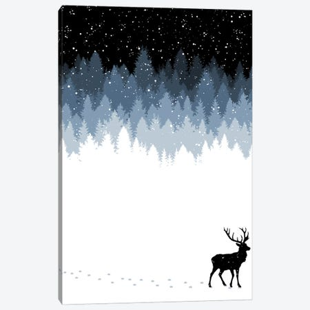 Winter Night Canvas Print #TFA403} by Tobias Fonseca Canvas Print
